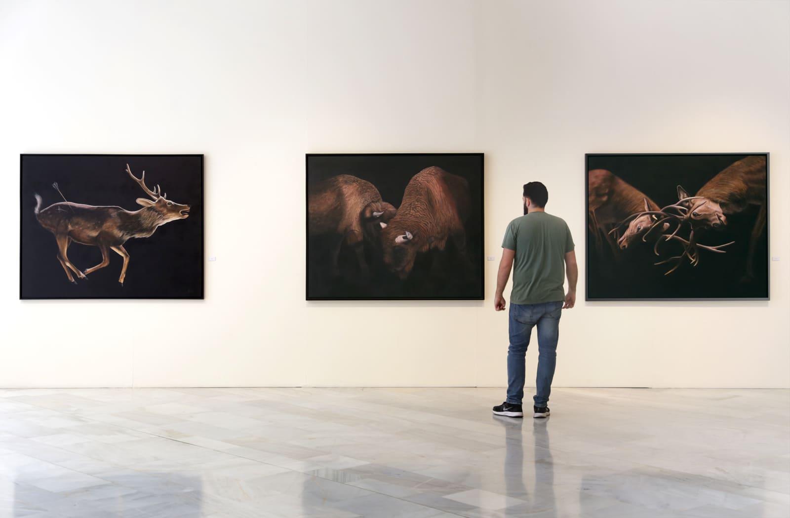 Albacete-exposicion-Pablo-Alfaro-pintura
